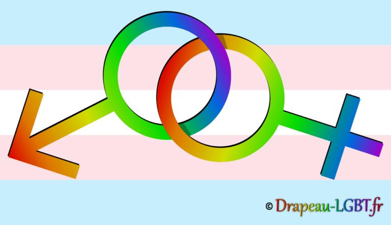 Symboles Vénus et Mars liés - drapeau trans