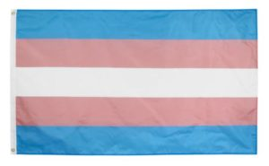 Drapeau Trans Transgenre Transexuel 90x150 cm