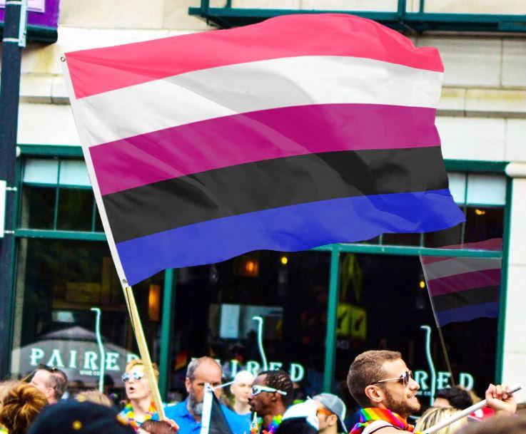 Drapeau genderfluid 90x150cm pride parade