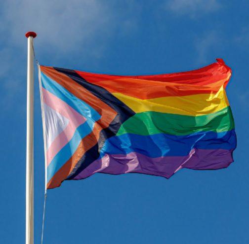 Progress Pride Flag Drapeau arc-en-ciel Europride 2019 Daniel Quasar 90x150 cm accroché mat extérieur