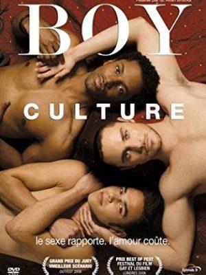 Affiche film Boy Culture de Q. Allan Brocka 2006