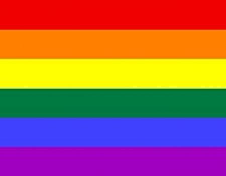 Drapeau Arc-en-ciel LGBT 6 couleurs de 1979