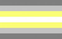 Drapeau deminonbinary demi non-binaire Salem X 2014