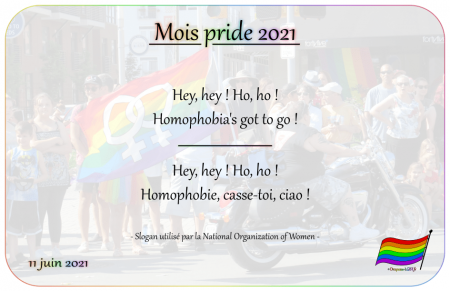 Drapeau-lgbt.fr Mois Pride 2021 Campagne slogans 11 juin Hey hey ho ho homophobia has got to go