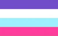 Drapeau multisexuel officiel