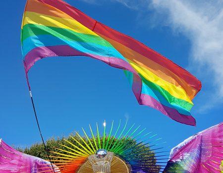 Gay Pride Montpellier 2019 - Personne costumée avec drapeau LGBT 1979